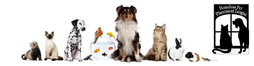 Links – Homeless Pet Placement League